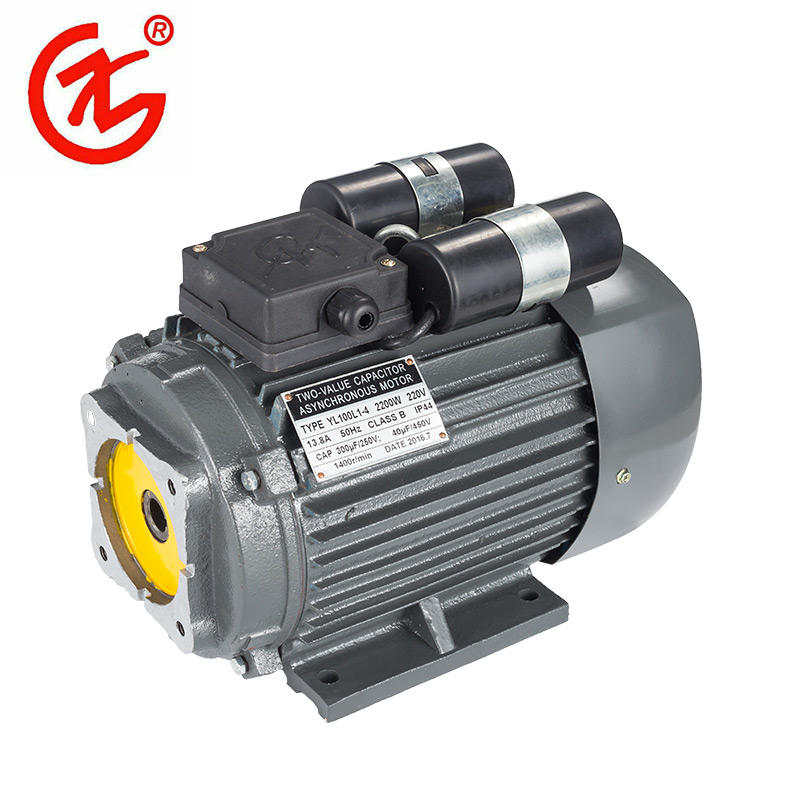 Asynchronous Induction Motor YL Series Hot Saling