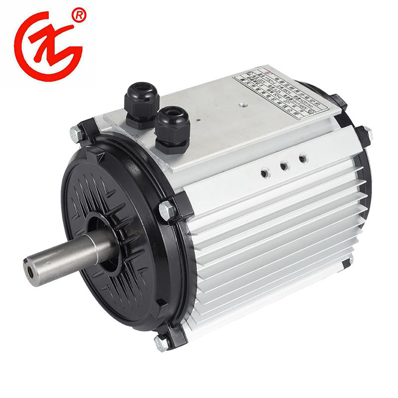 Quality Asynchronous Electric Motor YS Series Manufacturer