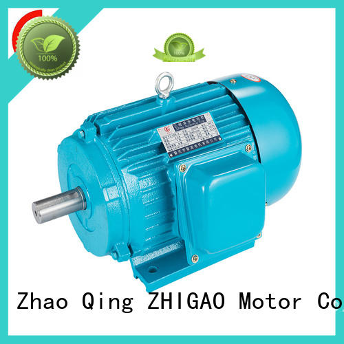 ZHIGAO Top ac and dc motor factory for food machine