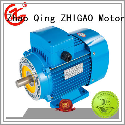 ZHIGAO Top three pole motor for business for food machine