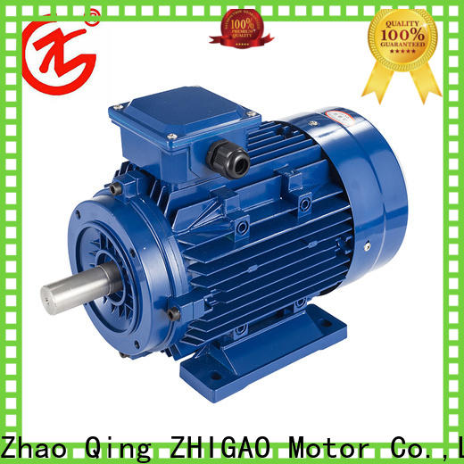 ZHIGAO Best synchronous motor drives supply for food machine