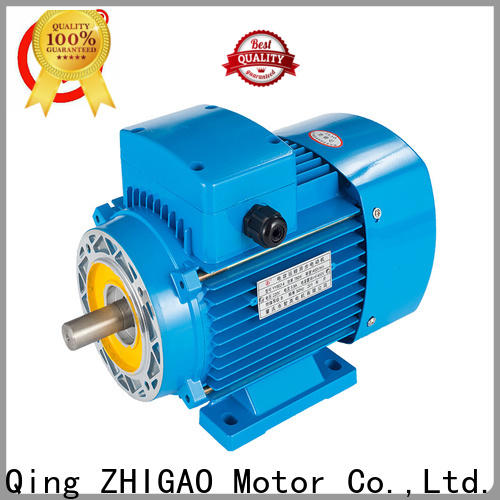 ZHIGAO Custom 3 phase electric motor speed control for business for food machine