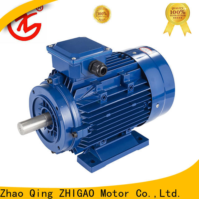ZHIGAO series induction motor drives supply for food machine